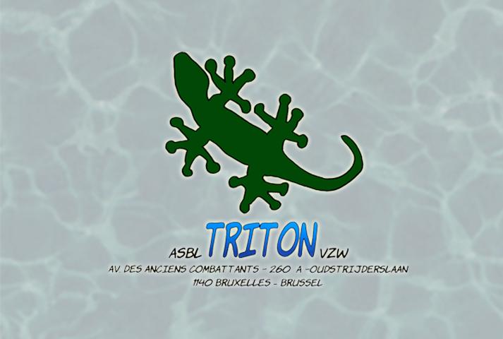Triton Evere Piscine